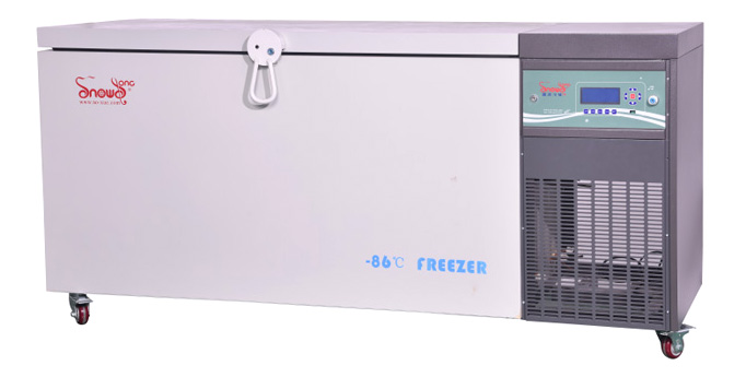 ultra low temperature freezer (-86 °C / -40°C)